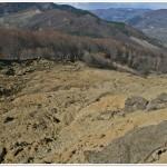 Landslide scarp, Mts Buzau (MMicu)