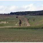 Ravena de versant pe vechi drum de panta, Podisul Moldovei (NRadoane)