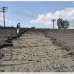 Sheet erosion, hard pan (C Hurjui)