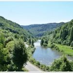 Riffle-pool succesion in Mures River Gorge (N.Radoane)