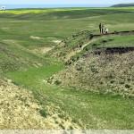Gurguiata Mare Gully. Topographic survey (2 – 6 iunie 2008, NRadoane).